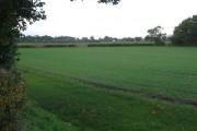 Towards Barnham Broom