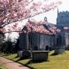 St. Martin's church, Bremhill