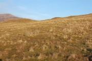 Moorland above Achachork