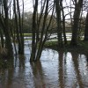 Flooded stream, Ashford Hill