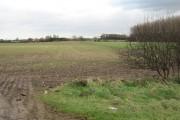 Farmland Near Laceby