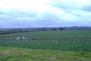 Parsonage farm, near Bushton