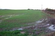 Large Field near Letwell