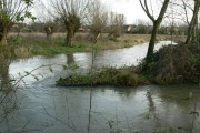 River Windrush near Witan Way, Witney