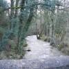 River Alyn Upstream from Pont Newydd