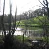 Duck pond near Bryn Eithin farm