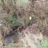 Broomhill Stream