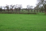 Farmland opposite Green Bank Farm