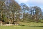 Farmland near Pontblyddyn