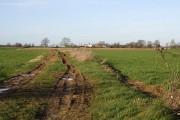 Farmland at Hanthorpe
