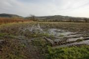 Farmland between Kingswood and Hillesley