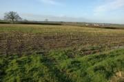 Farmland near Upper Barns Farm, near Kingswood