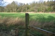 Lees Wood at Leeswood
