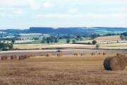 Arable fields from Spring Lane near Carlton Husthwaite