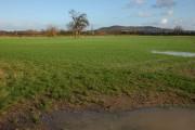 Low lying farmland at Letton