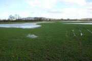 Flooded farmland at Waterloo