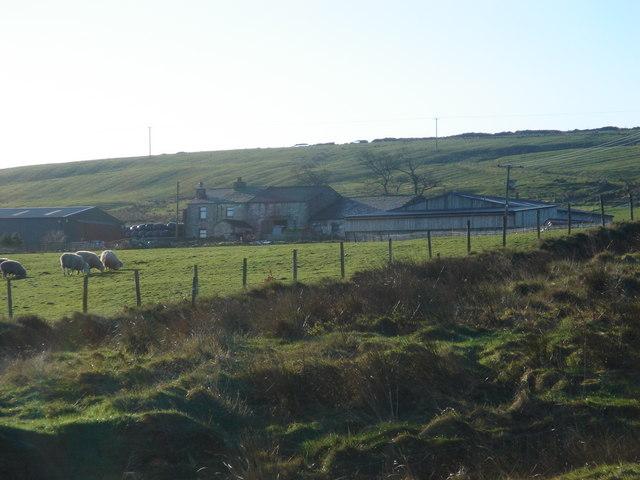 Hall Moss Farm