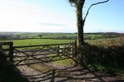 Cheldon: Mounticombe Moors