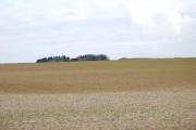 Farming on Tarrant Rushton airfield