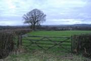 Kingrove farm