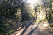 Old bridge abutments on the Deerness Valley Path
