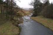 The Megget Water, near Cappercleuch.