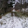 Looking north along the Speyside Way
