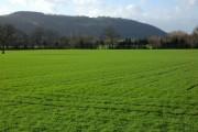 Farmland at Letton