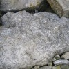 Limestone and Fossils