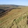 Meg's Hill