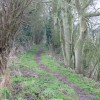 Looking SW along footpath to Ilenden Farm