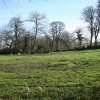 Exbourne: near Lower Narracott
