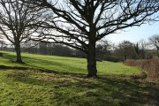 Broadwoodkelly: near Oakley House