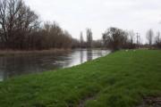 The River Avon near Bodenham