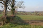 Farmland near Desford