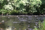 The River Tavy at Wash Ford