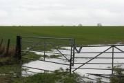 Arable land, Oakwood