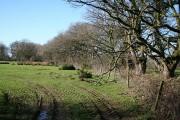 North Tawton: Staddon Moor