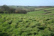 North Tawton: towards Northweek