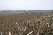 Farmland near Anvilles Farm