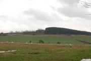 Farmland near Dodley