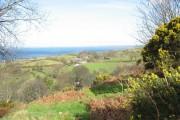 The farmland of Tyddyn Hen from the green lane