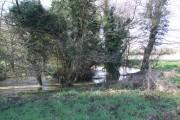 River Tas near Hapton