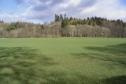 Farmland at Eels Haugh