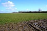Field north of Bishopstone (1)