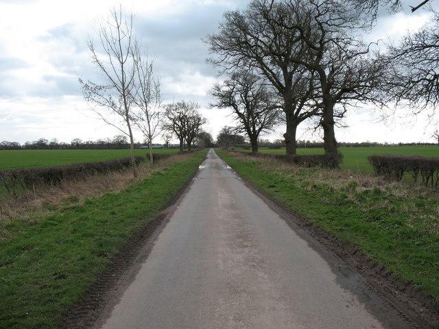 Catton Moor Lane
