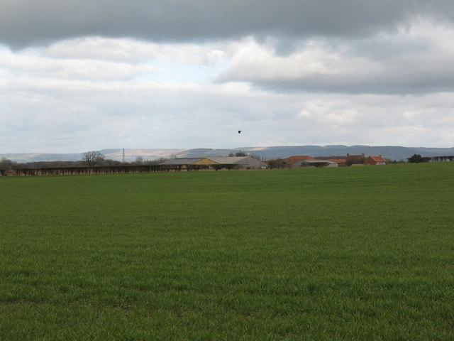 Farmland near West Lodge