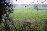 Across the fields to Hawkley