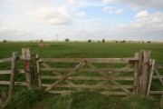 Farmland at Mill Hill