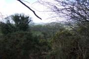 Near Linnacombe